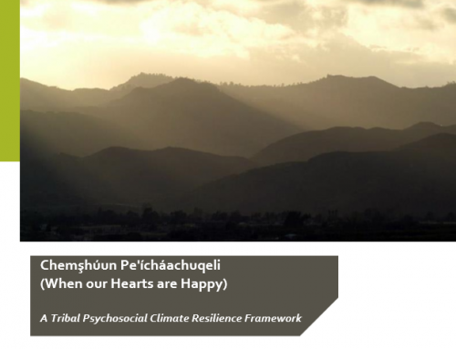 Pala Publishes New Report Offering a Tribal Psychosocial Climate Resilience Framework